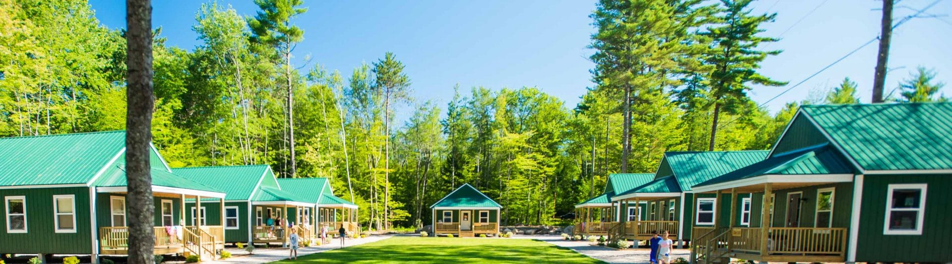 modern cabins in wooded area