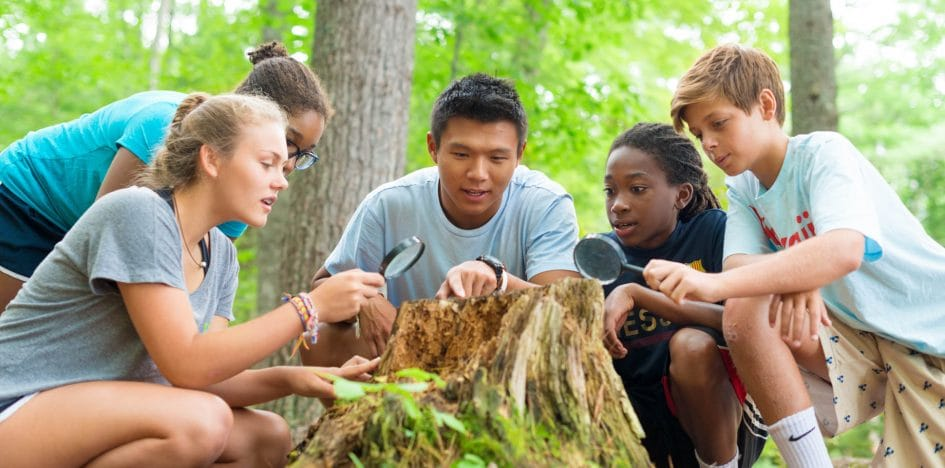campers looking at a tree stump with magnifying glasses