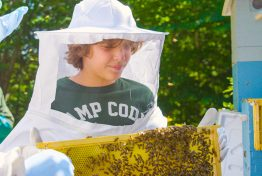 boy in bee keeper suit